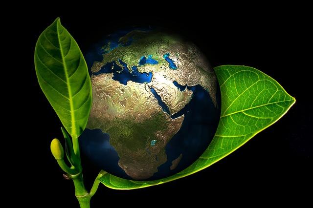 Cómo proyectar una imagen medioambiental de la empresa