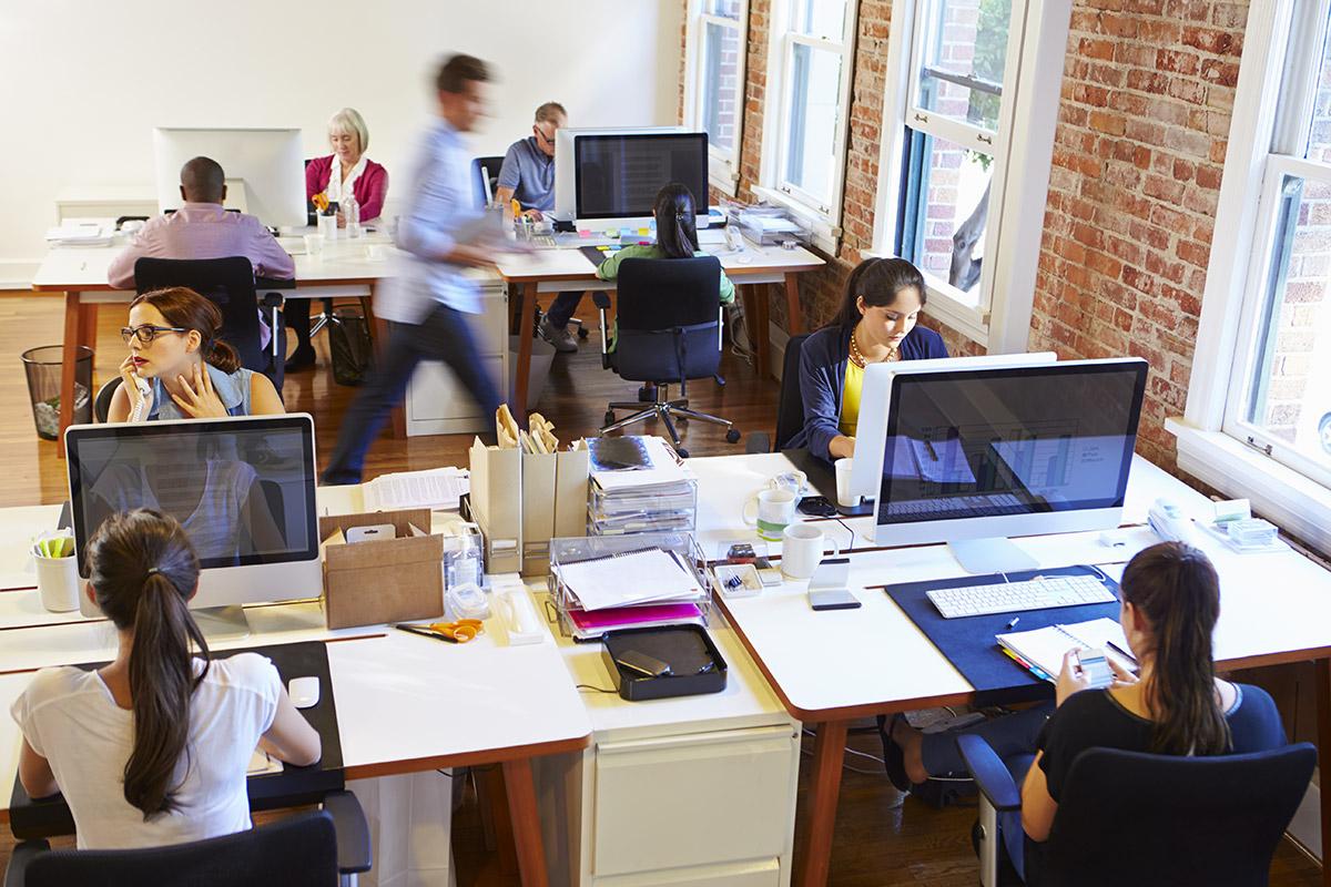 Nuevas oficinas para nuevas empresas