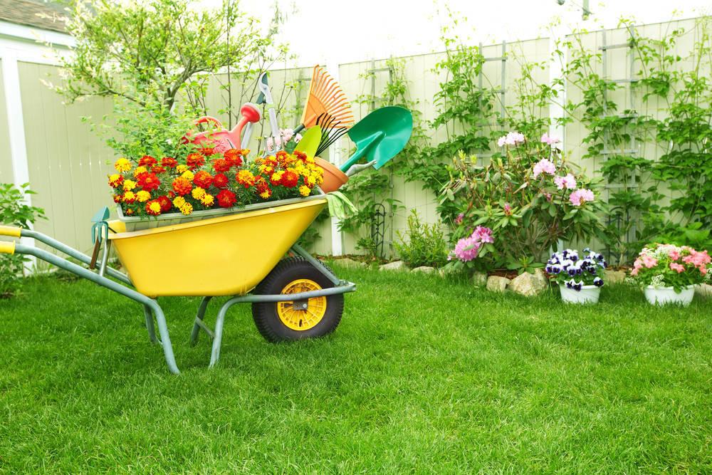 Cómo empezar un Negocio de Jardinería