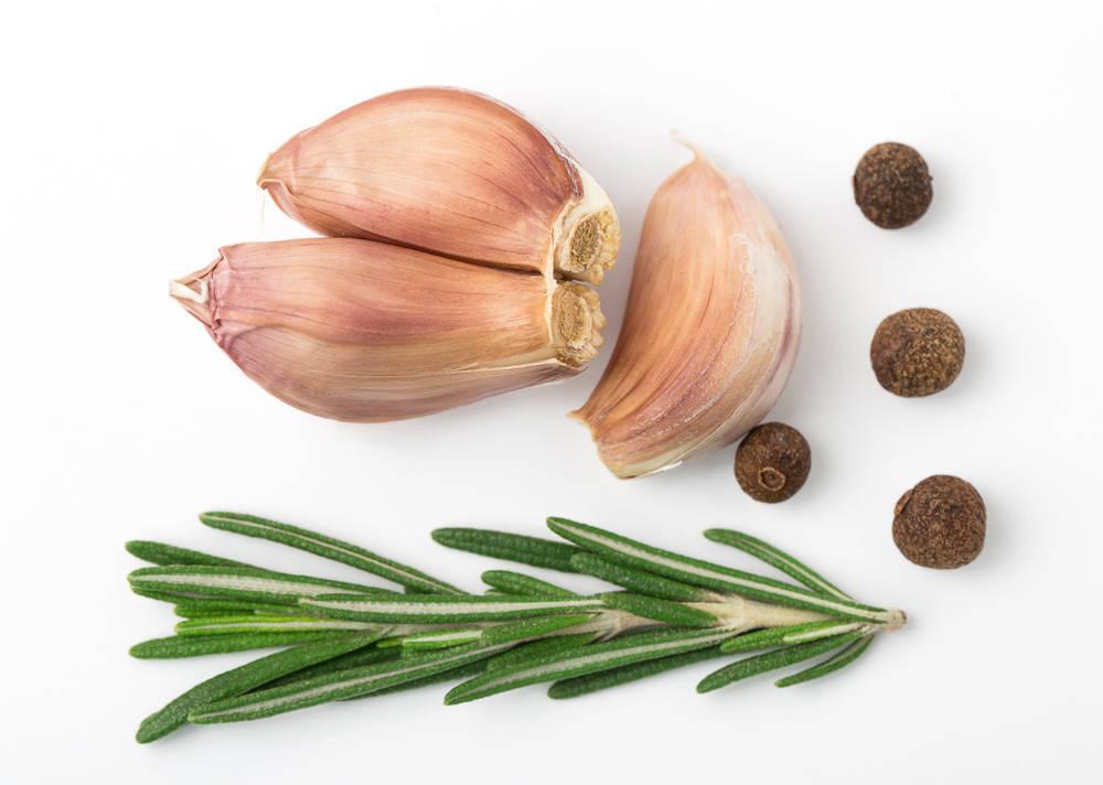 Imperio Garlic, El Imperio de los Ajos